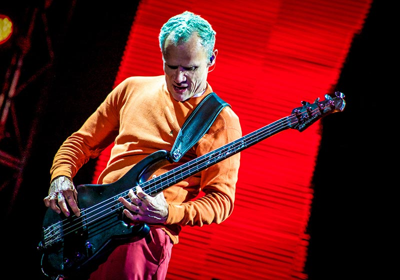 Bass Guitarist Flea Playing one of the Best Red Hot Chili Peppers Songs