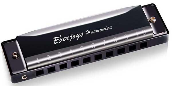 Everjoys Diatonic Harmonica