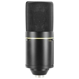 MXL-Mics-770-Cardioid-Condenser-Microphone