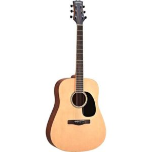 Mitchell Element Series ME1 Dreadnought