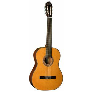 Washburn Classical C40 Nylon String Acoustic Guitar