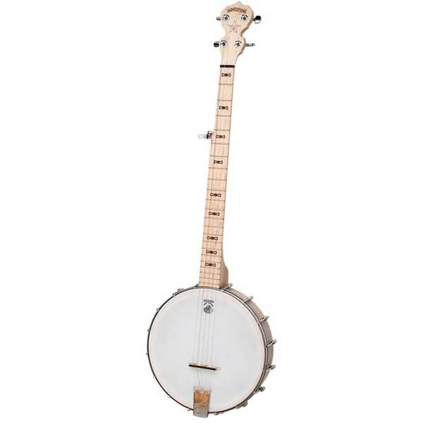 Deering Goodtime 5 String