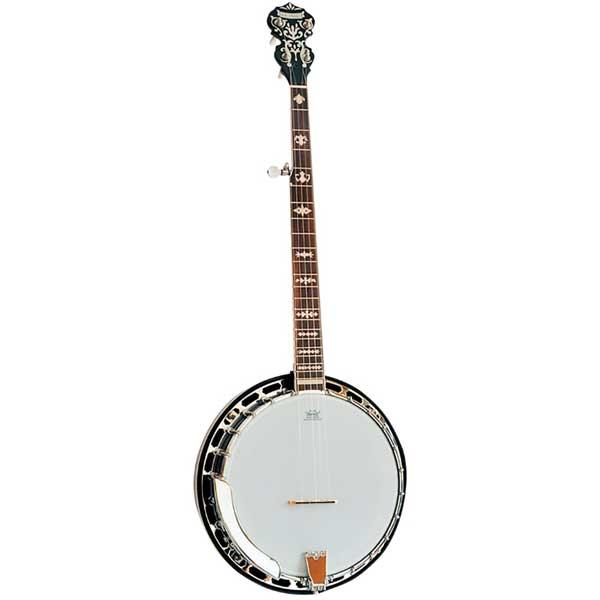 Morgan Monroe Deluxe Duelington 5 String