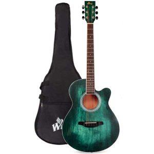 Winzz Acoustic Cutaway