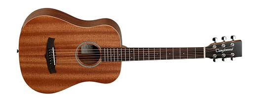 Travel Guitar Size Example