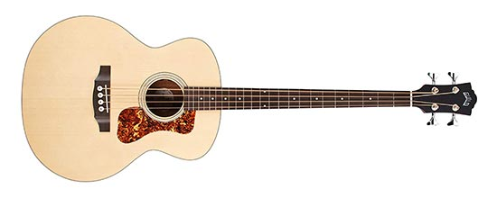 Acoustic Bass Guitar Example