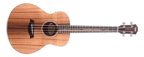 Acoustic Electric Bass Guitar Example