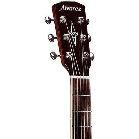 Alvarez Acoustic Guitar Brand Example