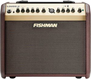 Fishman Loudbox Mini 60W Acoustic Guitar Amp With Bluetooth