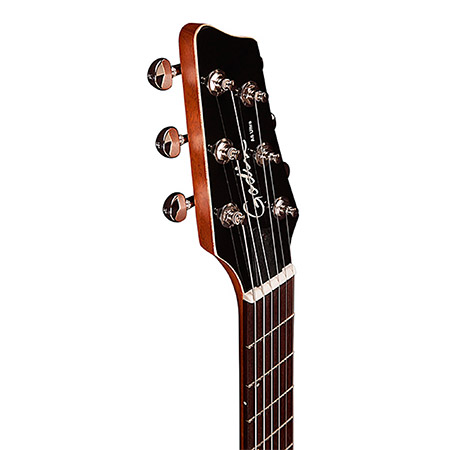 Godin Acoustic Guitar Brand Example