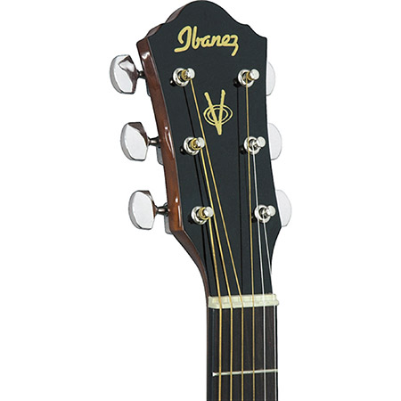 Ibanez Acoustic Guitar Brand Example
