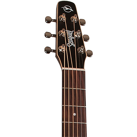 Seagull Acoustic Guitar Brand Example
