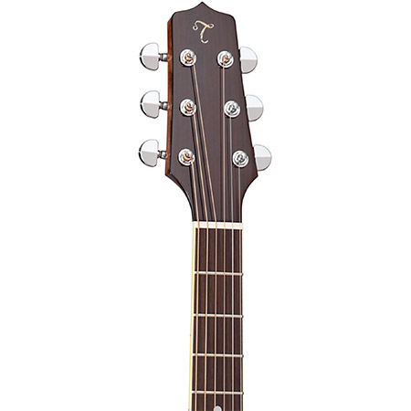 Takamine Acoustic Guitar Brand Example