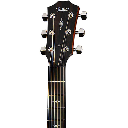 Taylor Acoustic Guitar Brand Example