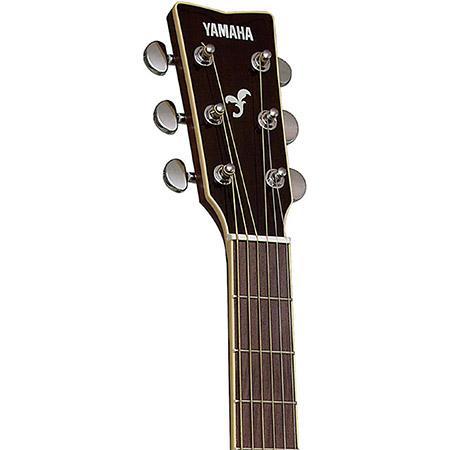 Yamaha Acoustic Guitar Brand Example