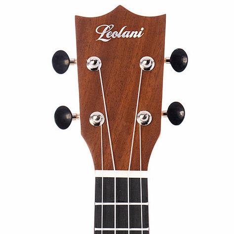 Leolani ukulele example