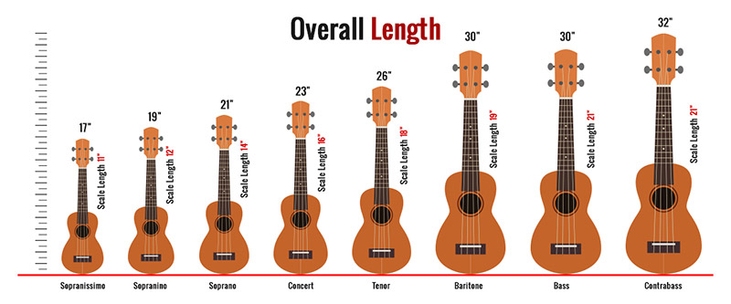 Ukulele Sizes Comparison Chart