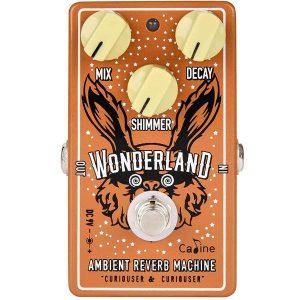 Caline Wonderland