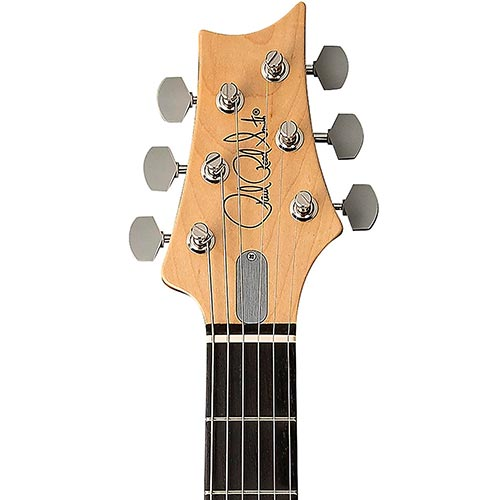 PRS Guitar Brand Example