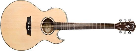 Unnamed Washburn Acoustic Guitar