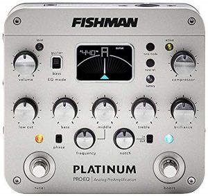 Fishman Platinum Pro